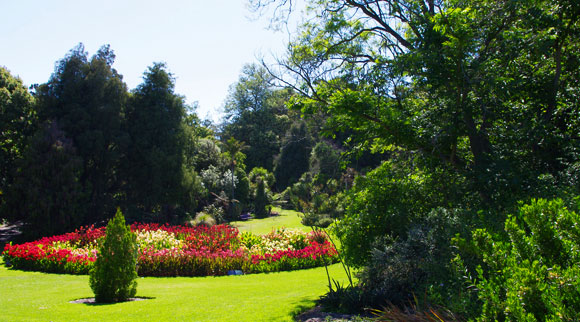 20-things-to-do-in-melbourne-on-a-sunny-day